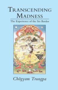 Transcending Madness cover